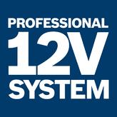 Система 12 В