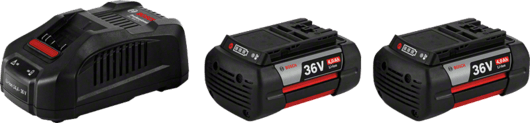 в картонена кутия с 2 x 4,0 Ah литиево-йонна акумулаторна батерия